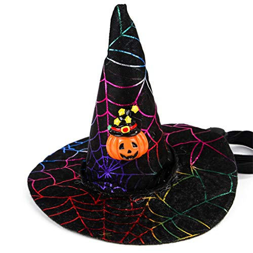 Museourstyty Pet Cat Halloween Natale Cosplay puntelli cappello cane zucca Spider Head Cap 4