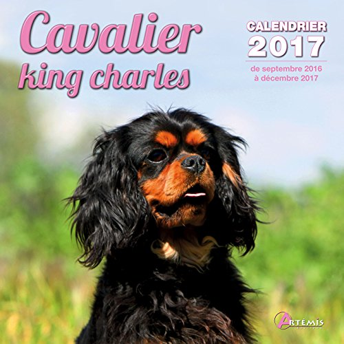 Calendrier cavalier king charles