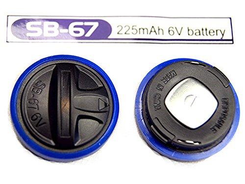 Lot de 2 Piles Compatible PetSafe RFA-67 6V Lithium