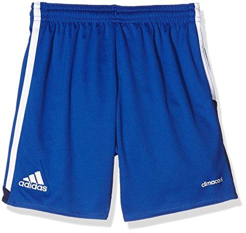 adidas Herren Regista 16 Shorts Bold Blue/White/Dark Blue