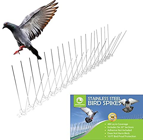 STAINLESS STEEL BIRD SPIKES - Durable Pigeon Repellent - Great Deterrent for Birds, Crows And Woodpeckers - Easy Setup And Removal - Keeps Pests Under Control - SATISFACTION GUARANTEED - Covers 10 FT