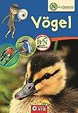 Naturdetektive: Vögel: Wissen und Beschäftigung für kleine Naturforscher ab 6 Jahren