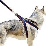 Bobi Hundeleine Hundegeschirr Set, Verstellbare und Schwerer Denim Haustier Nylon Leine Hundehalsband für Großen Mittleren Kleinen Hunde, Brustumfang t 30-70cm, Länge: 120cm (L - Brust: 40-70 cm)