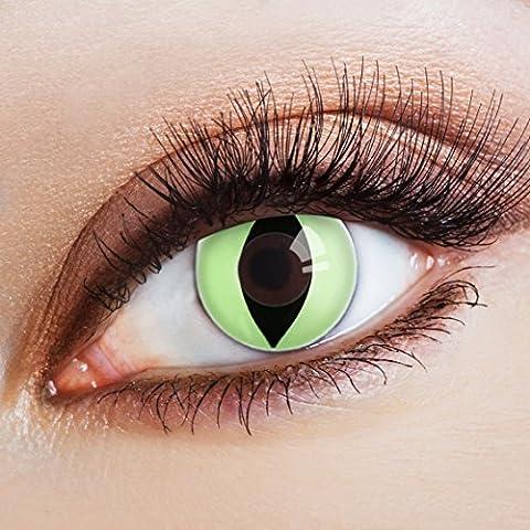 aricona Farblinsen hellgrüne Kontaktlinsen Katzenaugen zum Halloween Make-up (Cats Musical Halloween Kostüme)