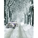 A.Monamour Scenic Winter White Snow Trees With Rimes Hoarfrost Christmas Holiday Mural Party Wall Decorations Vinyl Fabric Photography Backdrops 5x7ft - White Snow Trees Cars