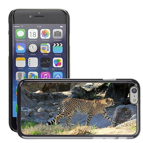 Just Phone Cases Bild Hart Handy Schwarz Schutz Case Cover Schale Etui // M00128864 Cheetah African Predator Gehen // Apple iPhone 6 4.7