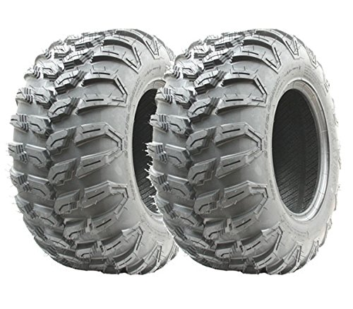 2-25x10.00R12 Wanda ATV High-Speed-Straße legalen Reifen (25 10 11 Atv Reifen)