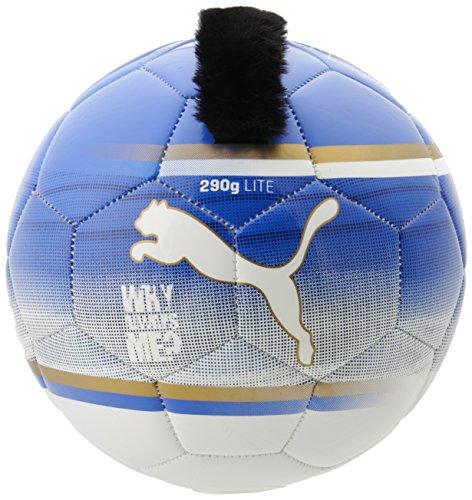 PUMA Fußball EVO Lite Players Ball, Team Power Blue/White/Team Gold/Mb45, 5