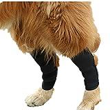 XinC Corvejón para Perro Brace Brace para la Rodilla del Perro Pierna Posterior Wrap en la articulación Protege la Valla del Perro Al Aire Libre Brace de compresión Cura y Evita,L