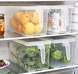 HapiLeap - Organizador de alimentos para cocina / refrigerador, contenedor transparente con tapa y asa