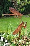 Lot de tuteurs de jardin en forme de libellule 2x 50cm Décoration de jardin en métal patiné rouillé ...