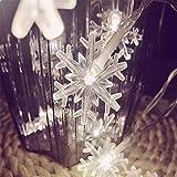 ODJOY-FAN LED Schneeflocken Zeichenfolge Licht Weihnachten Gestalten Zeichenfolge Beleuchtung Party Hochzeit Licht Dekor Beleuchtung Laternenpfahl String Light (Weiß3M,S)