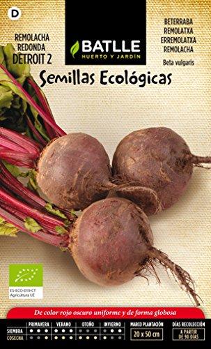 battle-semi-ecologici-barbabietola-detroit-2-125-semi-bio