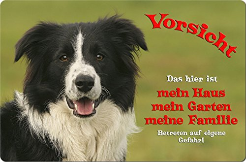 -border-collie-metall-warnschild-schild-hundeschild-sign-boc-15-t1