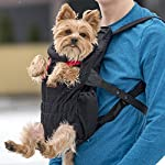 Petmars Pet Backpack Carrier: Dog And Cat Carrying Bag, Front And Back Facing, For Small Medium And Large Sized Breeds… 13