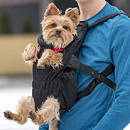 Petmars Pet Backpack Carrier: Dog And Cat Carrying Bag, Front And Back Facing, For Small Medium And Large Sized Breeds… 6