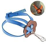 Lanking Papageien-Trainings-Seil-Vogel-Leine, Freien justierbares Geschirr, blau
