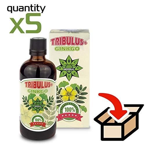 Cvetita Herbal, 5 x Tribulus + Ginkgo Biloba Paket, 5 x 100 ml Kräuterflüssigkeit Serum zur Unterstützung des kurzfristigen Speichers und der kognitiven Funktionen -