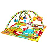 New Born Baby Playmat, Play Gym, Musical Activity Gym,Soft Toy, Fun Animals,Music,Textures,Rattle,Teethers, Mirror