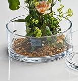 5x Glasschale Automatic klar rund 8 cm Ø 19 cm von Sandra Rich