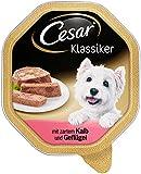Cesar Klassiker Hundefutter mit zartem Kalb und Geflügel, 24er Pack (24 x 150 g) Schalen