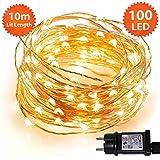 Weihnachtsbeleuchtung Lichterketten 100 Micro LED Warmweiße Weihnachtliche Innen. Netzstrombetrieben LED feenhafte Lichter Ideal für Weihnachtsbaum Dekorationen LED Schnur Lichter - Kupferkabel