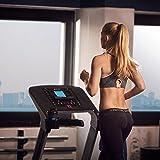 CAPITAL SPORTS Pacemaker X20 Laufband Heimtrainer (4 PS, 16km/h, klappbar, gedämpfte Lauffläche, 16% Steigung, 25 Trainingsprogramme, Trainigscomputer, mit oder ohne Brustgurt) silber - 2