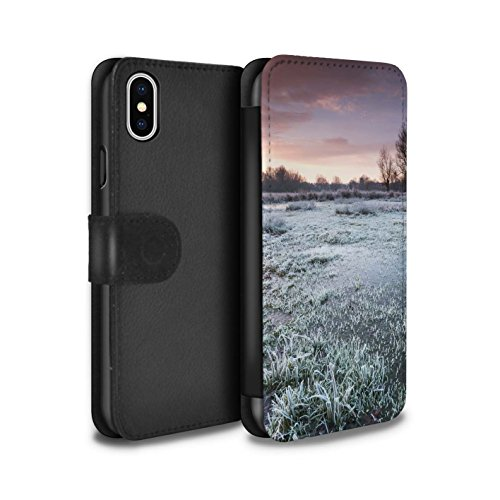 Stuff4 Coque/Etui/Housse Cuir PU Case/Cover pour Apple iPhone X/10 / Ciel Gris Design / Hiver Saison Collection Terrain Marécageux