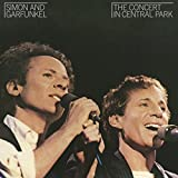 #5: The Concert in Central Park