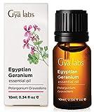 Aceite esencial de geranio, 100% puro grado terapéutico, 10 ml