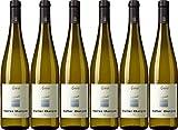6x Mueller Thurgau 2016 - Kellerei Andrian, Südtirol - Weißwein