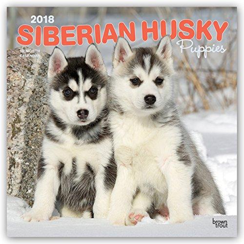 Descargar Libro Siberian Husky Puppies - Husky-Welpen 2018 - 18-Monatskalender: Original BrownTrout-Kalender - mit freier DogDays-App de Browntrout Publishers