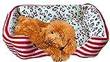 Y-YT Hundebett Platz gestreift Zwinger für Kleine Katzen- und Schlafsofa (rot blau 40 cm x 30cmx14cm)
