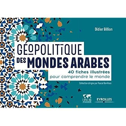 Géopolitique des mondes arabes: 40 fiches illustrées pour comprendre le monde