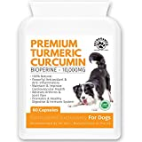 Best Organic Brands - Pet Organic Turmeric For Dogs | Active Bioperine Review