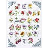 Bien Diseñado Anchor floral Kit de punto de cruz, diseño de letras del abecedario (producto)