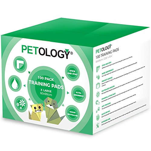 pee pads, Perfect large pee pads for older dogs, Dog Incontinence