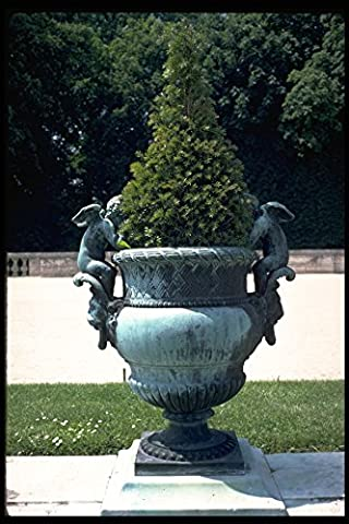 346041 Urn With Cherubs Versailles France A4 Photo Poster Print 10x8