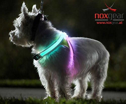 Reflective & Fluorescent LED Dog Vest LED Harness