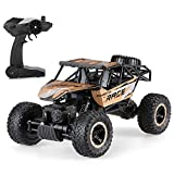 Remote Control Cars,Rabing RC Vehicle Rock Off-Road Crawler Truck 2.4Ghz 4WD Fast Speed