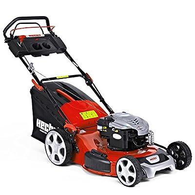 HECHT Benzin-Rasenmäher 556 SB Briggs & Stratton Benzin-Mäher (4,2 kW (6,0 PS), Schnittbreite 56 cm, 70 Liter Fangkorbvolumen, 7-fache Schnitthöhenverstellung 25-75 mm, Radantrieb)