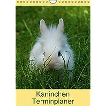 Kaninchen Terminplaner (Wandkalender 2018 DIN A4 hoch): Kuschelige Heimntiere (Planer, 14 Seiten ) (CALVENDO Tiere) [Kalender] [Apr 04, 2017] Kattobello, k.A.