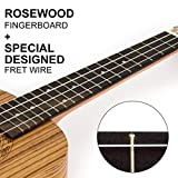Kmise 23-Zoll-Konzert-Ukulele Uke Hawaii-Gitarre Musikinstrumente Zebrano Zebrano W / Bag
