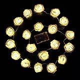 Colleer® 2m 20er LED Rosen Lichterkette warmweiße LED-Beleuchtung