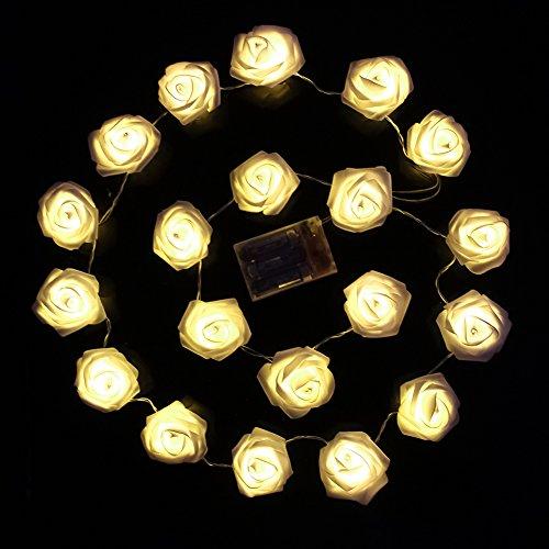 ® 2m 20er LED Rosen Lichterkette warmweiße LED-Beleuchtung