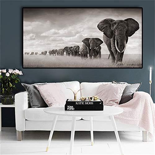 Negro-blanco África Elefantes Animales Salvajes Lienzos, Cuadros e impresiones sin marco Cuadros...