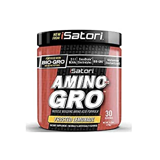 Amino-Gro 270g (Lemonade) - 519vPhmTpiL. SS315