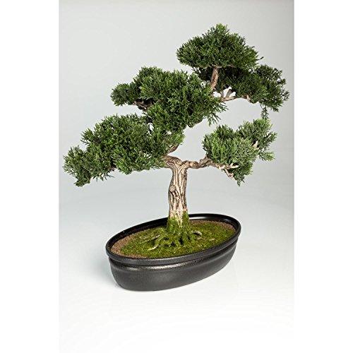 artplants Künstlicher Bonsai Zeder in Dekoschale, 230 Zweige, 40 cm - Hochwertiger Kunstbonsai Ceder