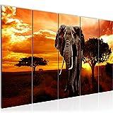 Bilder Afrika Elefant Wandbild 200 x 80 cm - 5 Teilig Vlies - Leinwand Bild XXL Format Wandbilder Wohnzimmer Wohnung Deko Kunstdrucke Orang Grau -100% MADE IN GERMANY - Fertig zum Aufhängen 001255a