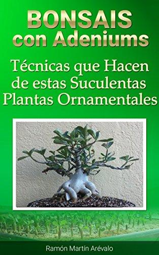 bonsais-con-adeniums-tcnicas-que-hacen-de-estas-suculentas-plantas-ornamentales-la-bblia-del-adenium